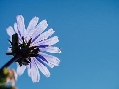 Wie Meditation Ihr Leben verbessern kann Erfahrung Bild mittig